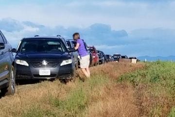 Đi theo Google Maps, gần trăm ô tô 'dạt' ra giữa ruộng