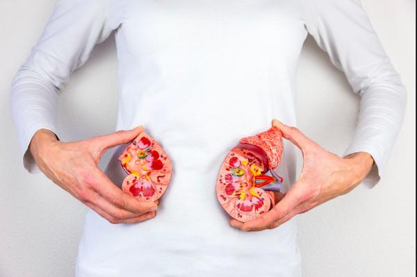 Sỏi thận 5mm: 3 ảnh hưởng tiêu cực đến sức khỏe