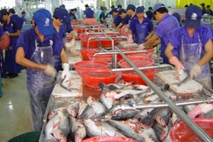 Processing seafood by-products – the billion-USD industry