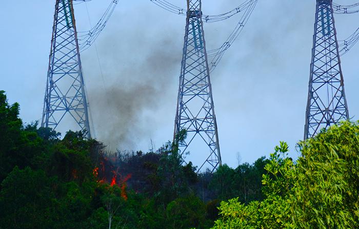 cháy rừng,hỏa hoạn,Đà Nẵng