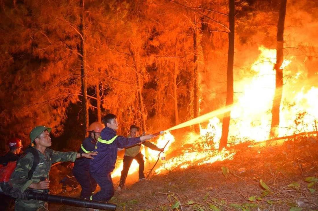 Kết quả hình ảnh cho cháy rừng ở hà tĩnh
