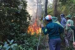 Cháy rừng thông lớn nhất Hà Tĩnh, tạm giữ một đối tượng đốt rác