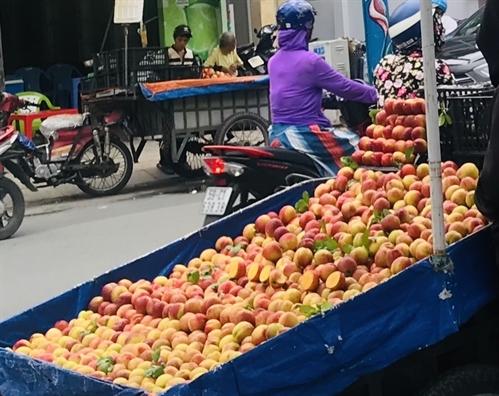 đào trung quốc,hoa quả Trung Quốc,trái cây Trung Quốc,nông sản Việt