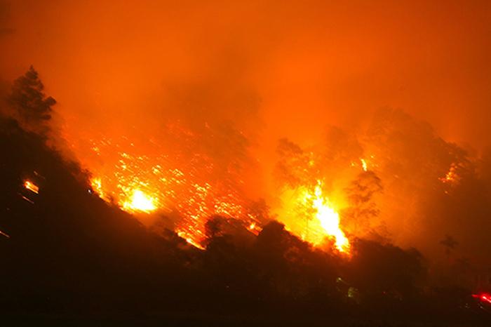 Phan Anh lên tiếng trước chỉ trích khóc nhà thờ Đức Bà, thờ ơ cháy rừng VN