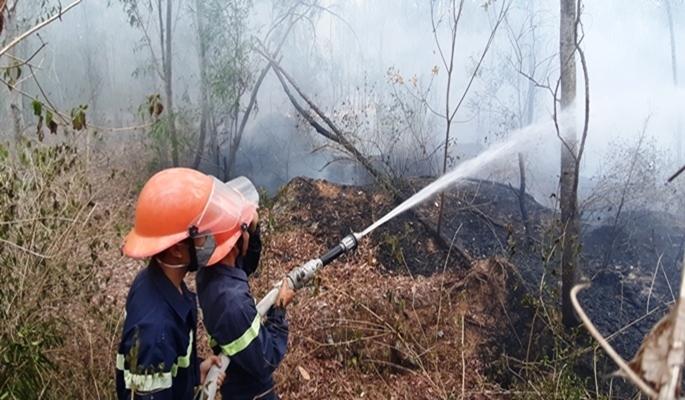 Cháy rừng dữ dội ở Quảng Nam, bạt ngàn rừng keo thành tro