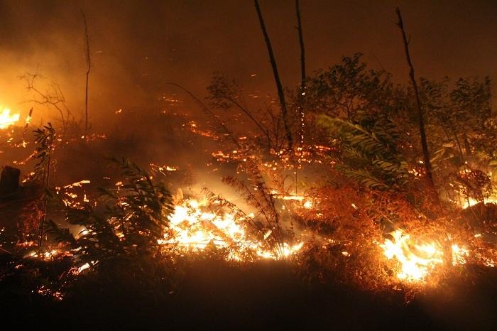 Cháy rừng liên tục ở Hà Tĩnh, thiếu thiết bị chữa cháy nói gì đến trực thăng