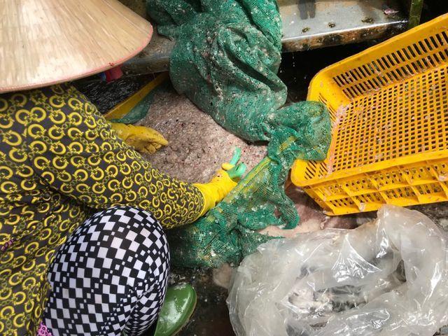 Chuyện lạ miền Tây: Tranh nhau mua vảy cá với giá rất cao