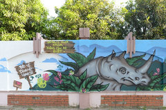 Artists paint murals to advocate for wildlife conservation