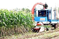 'Kỹ sư làng' chế tạo máy khiến nông dân bái phục ở An Giang