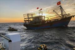 Tìm thấy 4 thi thể trong cabin tàu bị chìm trên biển Bình Thuận