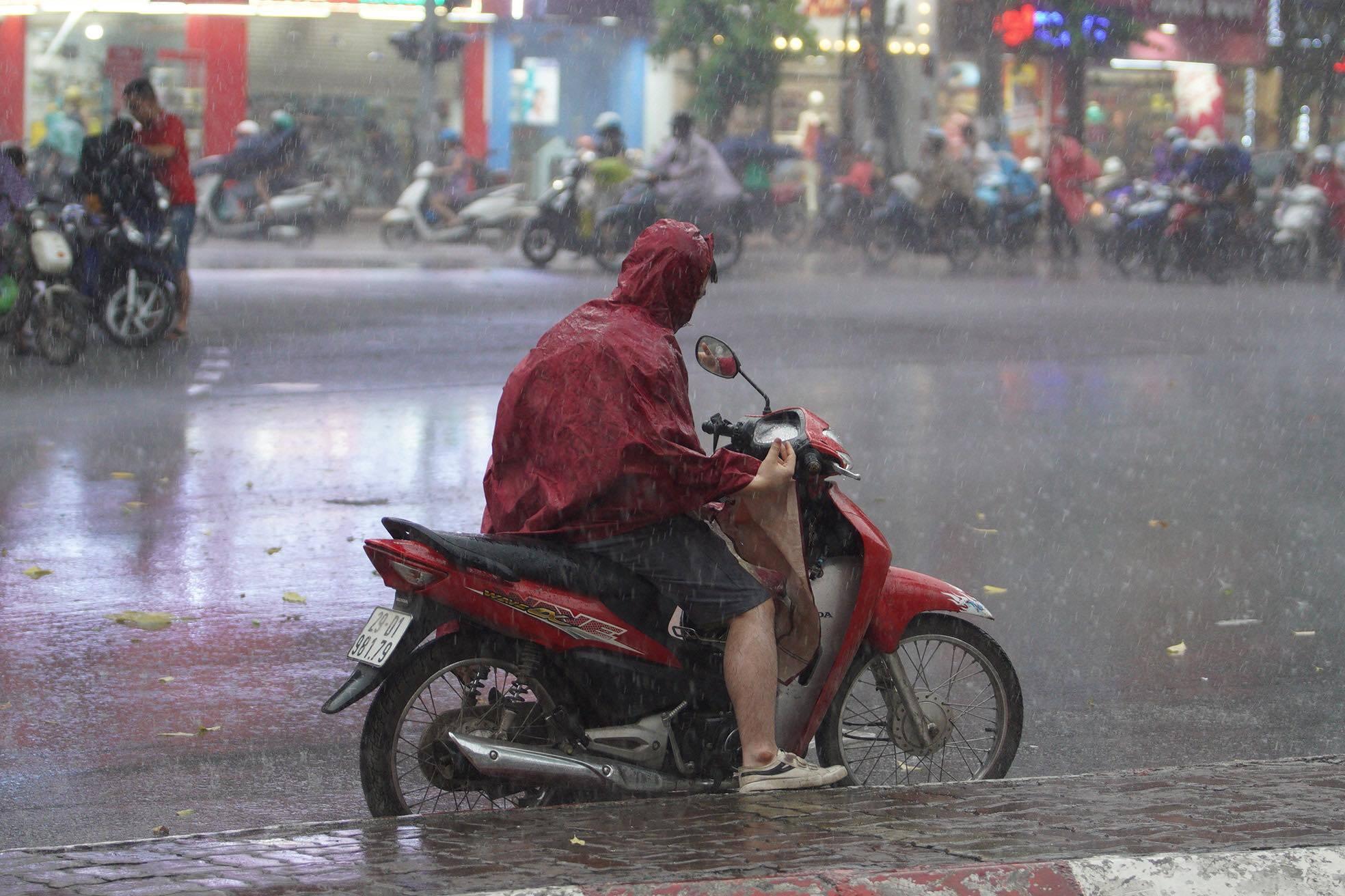 Hà Nội mưa to gió lớn, cây đổ đè trúng người đi đường