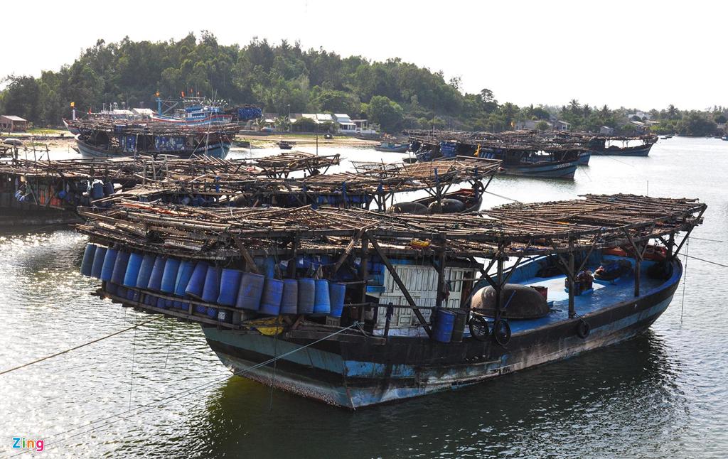Ngư dân miền Trung khốn đốn vì hàng nghìn tấn mực tồn kho
