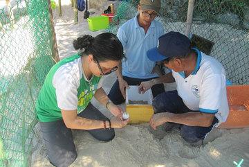 Vietnam's islands to eliminate plastic waste