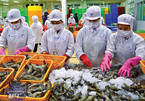 EVFTA paves way for more catfish, shrimp exports to EU