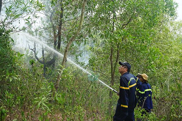 Rừng ở Đà Nẵng bốc cháy dữ dội, hơn 100 người tham gia dập lửa