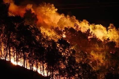 Rừng Hà Tĩnh cháy rực nửa đêm, dân tất tả ôm đồ tháo chạy