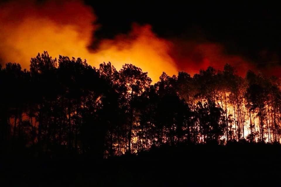 cháy rừng,cháy rừng ở hà tĩnh,Hà Tĩnh,nắng nóng