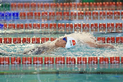 Vietnam to compete in world swimming champs