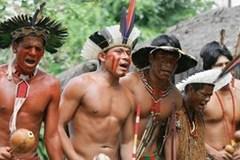 Cuộc chiến sinh tồn của người bản địa Amazon