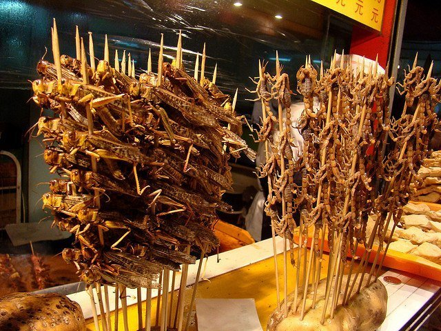 Những món ăn đáng sợ ở châu Á khiến du khách hoảng hồn