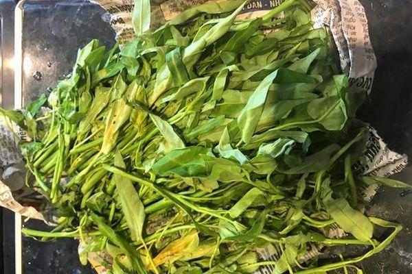 Rau muống ở Việt Nam rẻ bằng cốc trà đá, ra nước ngoài đại gia mới dám mua ăn