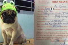 Thanh niên mang chó đi 'cầm' cả năm không chuộc, chủ tiệm than nuôi quá tốn kém