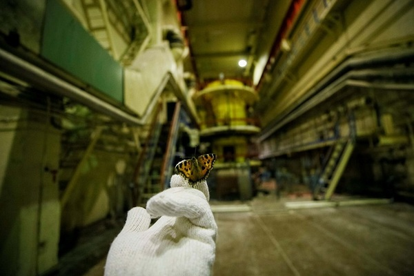 'Vùng chết chóc' Chernobyl sẽ trở thành điểm du lịch