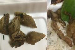 Đặt cơm online nhận suất ăn 5 miếng xương gà, lời giải thích 'khó đỡ' của chủ quán
