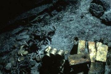 Ly kỳ cuộc trục vớt xác tàu chứa 300.000 thỏi vàng
