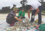 Plastic waste in Vietnam's coastal areas reaches alarming levels