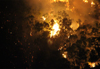 Cháy dữ dội trên núi Bà Hỏa, cả trăm hộ dân khu phố Quy Nhơn hoảng loạn
