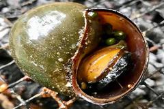 Nướng ốc bươu nước mắm tiêu lai rai ngày mưa