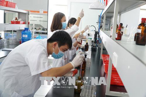 HCM City implements new policies to attract talented staff