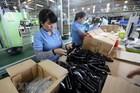 Tiếp sức cho doanh nghiệp công nghiệp hỗ trợ