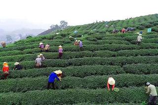 Vietnam working to ensure no one is left behind