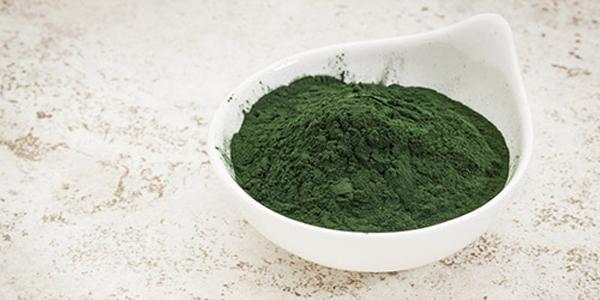 tảo mặt trời,tảo mặt trời tăng cân,tảo xoắn spirulina,thuốc tăng cân của mỹ,tảo biển