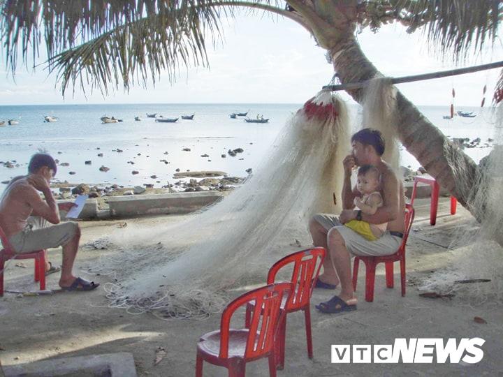 Chuyện chưa biết về những cuộc tàn sát rùa biển ở Cù Lao Chàm
