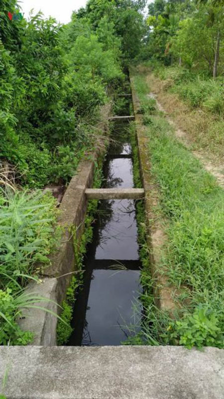 Factories in residential area blamed for water pollution