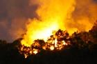 Rừng ở Đà Nẵng cháy dữ dội, hàng trăm người dập lửa trong đêm