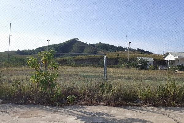 Trại bò nghìn tỷ liên quan ông Trần Duy Tùng giờ thành vườn chuối