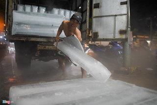 Những đấng mày râu kiếm chục triệu đồng từ nghề vác đá cây ở Sài Gòn