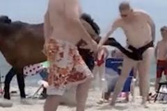 Khoảnh khắc đau đớn người đàn ông bị ngựa đá ngay 'chỗ hiểm'