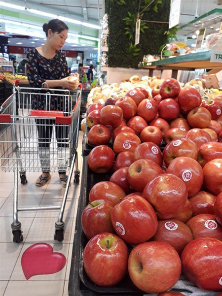 Demand for organic food soars in HCM City