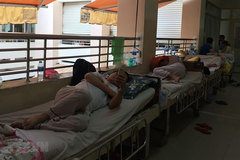 Health ministry promises response as dengue fever sweeps country
