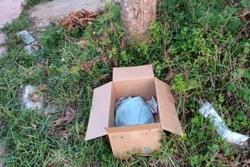 Thi thể bé gái trong thùng giấy tại nghĩa trang ở Thanh Hóa