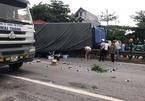 Đứng xem tai nạn, 6 người bị xe tải lật đè tử vong trên quốc lộ 5