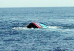 Tàu cá chở 4 ngư dân Thanh Hóa bị gió lốc nhấn chìm trên biển