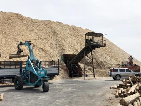 Wood chip exports stuck on the way to China