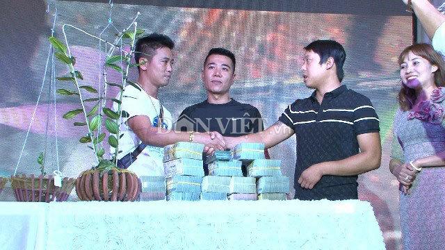 'Hàng khủng' Lâm Đồng, chậu lan Giả hạc đột biến bán giá 5 tỷ