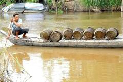 Vietnam's Mekong Delta faces water shortage and salinization